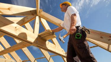 Zimmermann © sculpies, stock.adobe.com